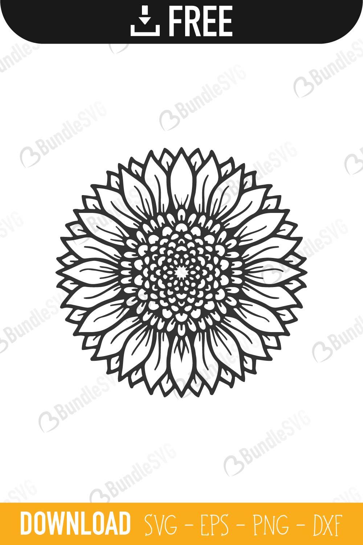 Download Sunflower SVG Cut Files Free Download | BundleSVG
